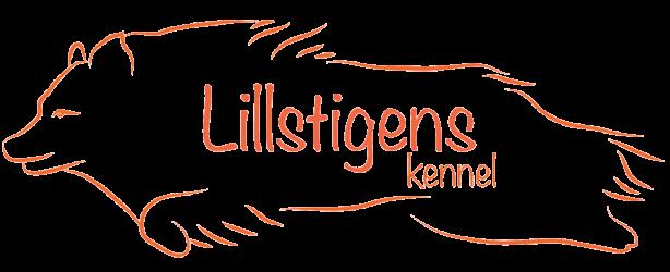 Lillstigen's Kennel